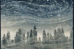 cyanotype-pirjolempea-11