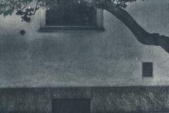 cyanotype-pirjolempea-12
