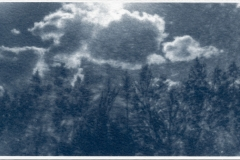 cyanotype-pirjolempea-3